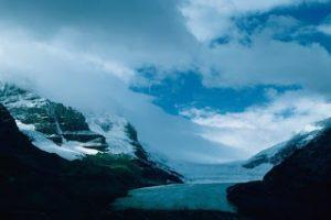 gurun arktik