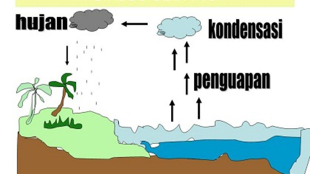 3 Jenis Siklus Air Disertai Gambar Dan Penjelasannya