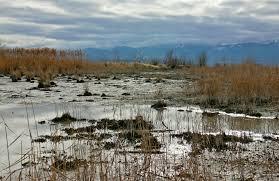 rawa lumpur